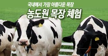 [특선]낙농체험 농도원 목장체험