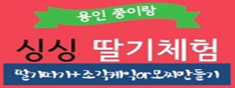 [겨울방학특가]용인 쭝이랑딸기(딸기따기+조각케익또는모찌+동물먹이주기)