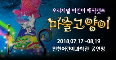[만원특가]매직컬 마술고양이(인천)
