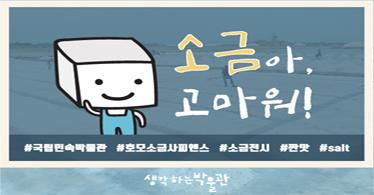 [여름방학특별전] 소금아, 고마워!-국립민속박물관