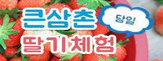 [천원할인/당일]2019 큰삼촌 당일 농촌체험+딸기체험