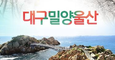 [1박2일]대구/밀양/울산(영남알프스+케이블카)