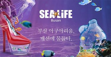 [특별할인입장권/15000원]]SEA LIFE 부산 아쿠아리움 입장권